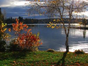 autumn-landscape-677004_1280
