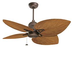Pecan Palm fan