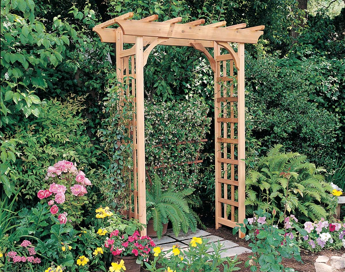 Colorful climbers for your trellis or arbor fifthroom living for Trellis or arbor