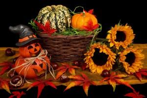 autumn-21499_1280