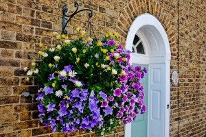 Basket-of-flowers-GettyImages-670762741-588b85453df78caebc454dfb