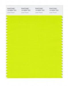 13-0550_limepunch