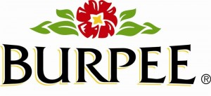 Burpee_Logo-1