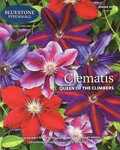 bluestone-perennials-plant-catalog-579be4795f9b589aa9877dee