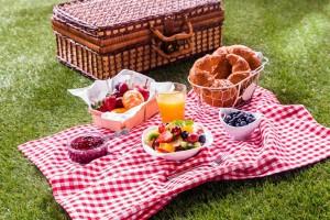 picnic-1024x682