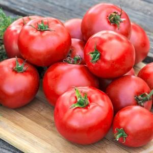 SKU 94713 Lycopersicum Beef Maestro as Tomato Tasty Beef Hybrid SKU 94714 SKU 1185