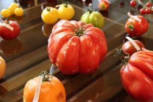 tomato-1215020_1280