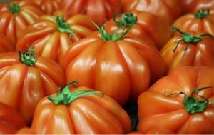 tomato-2608618_1280
