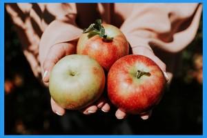 22.Go-apple-picking.