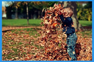 26.Rake-a-pile-of-leaves-and-jump-in.