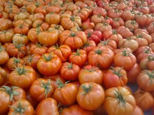 tomato-2307984_1280
